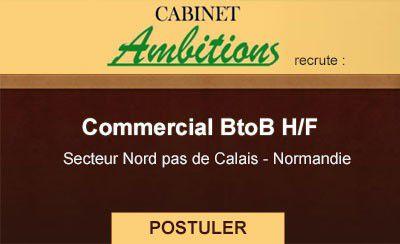 Le Cabinet Ambitions recrute un(e) Commercial BtoB H/F
