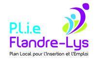 PLIE FLANDRE LYS