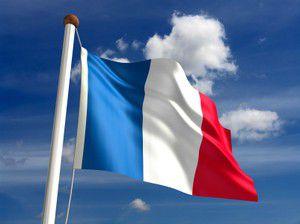 Les assistants de langue française